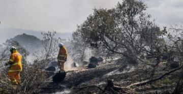 Avustralya'daki yangınlarda 20 ev küle döndü