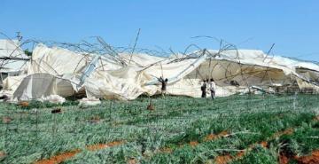 TARSİM'den 5 milyar liralık hasar tazminatı