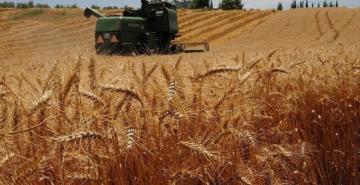 Çiftçiye Şubat'ta 3 milyar 24 milyon lira tarımsal destek